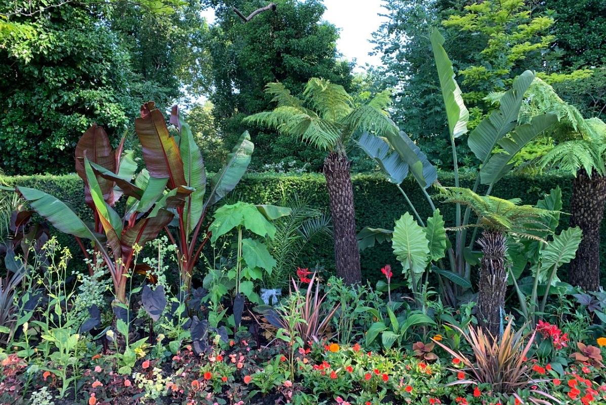 Jungle Border by Edward Kellow