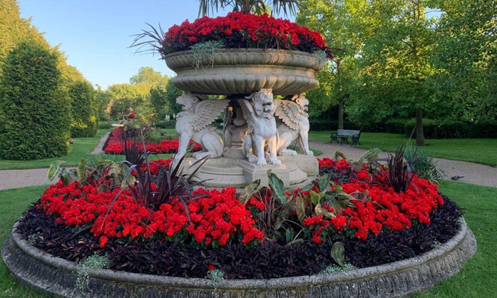 Griffin Tazza Avenue Gardens